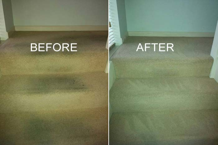 Best Carpet Cleaning Rossmoyne
