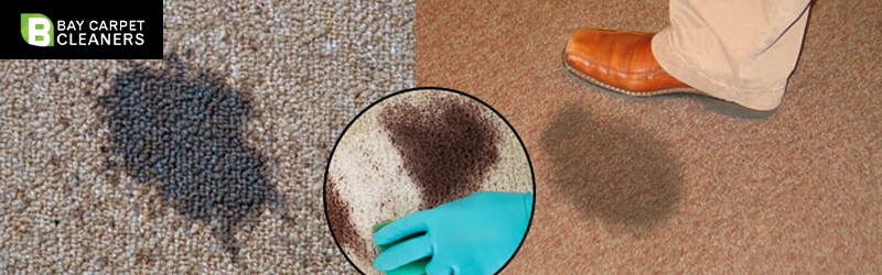 Carpet Stain Removal Bellevue Heights